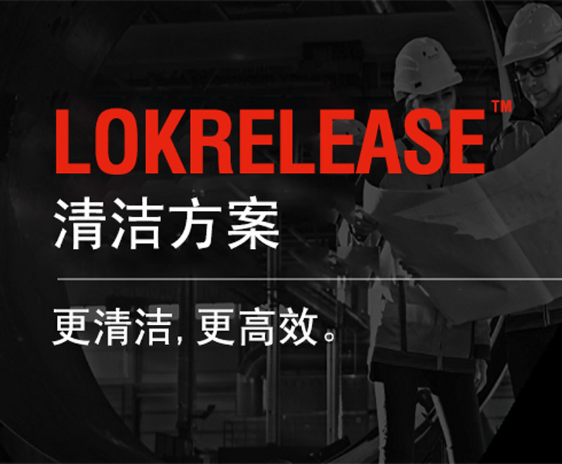 LORD LokRelease Rubber Bonding Mold Release and Adhesive Cleaning Solution