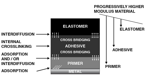 The layers of components within the Rubber-to-Metal bonded assembly are arranged in such a way that they are progressively decreasing in modulus from the primer to the elastomer.