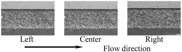 Figure 4: Particle distribution within the underfill cross-section of 5 mm x 5 mm flip chip assembly